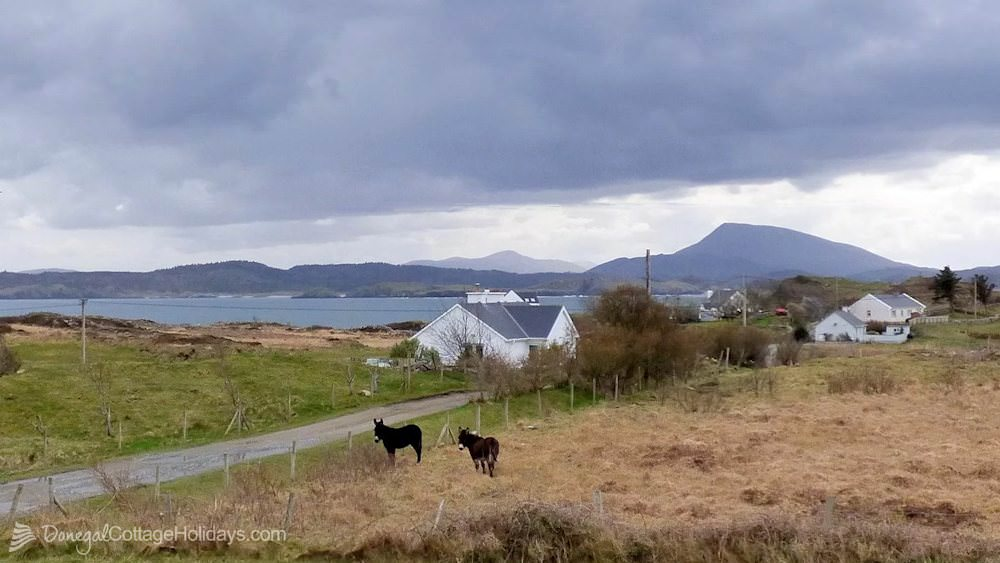 Muckish View Holiday Home - view to front
