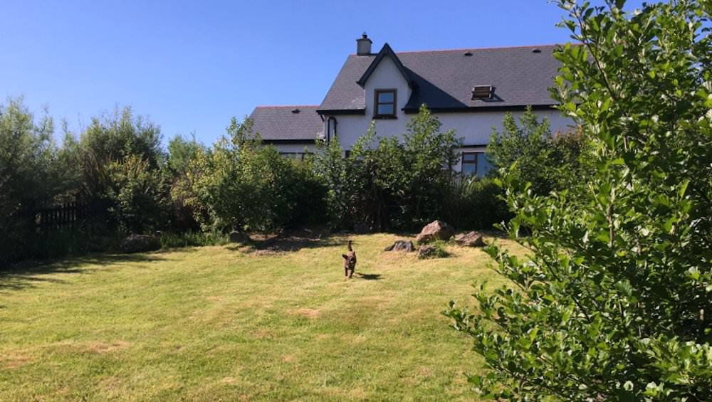 Willow House Rossnowlagh - Garden2