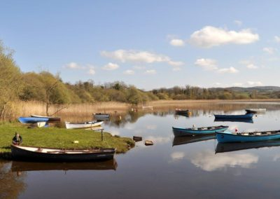 16 Aras Ui Dhomhnaill Milford - trout fishery at nearby Lough Fern
