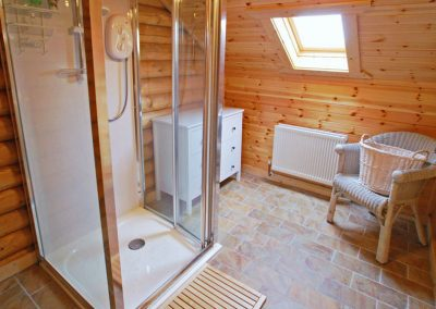 Ensuite shower - Inniskill Lodge Rathmullan